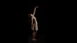 triptych study of fluent movement ©loudebuck